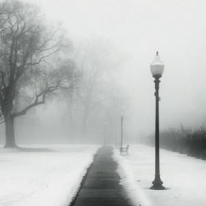 foggy_day_in_the_park_by_jheintz21