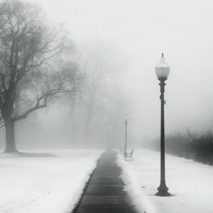 foggy_day_in_the_park_by_jheintz21